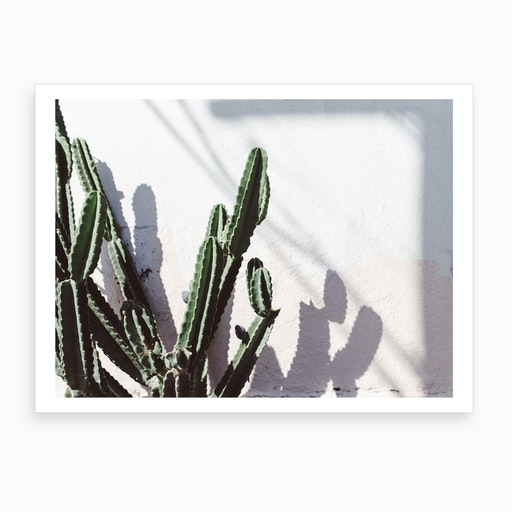 Californian Cactus Art Print