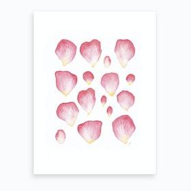 A Family Of Petals Art Print
