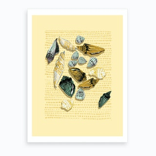 Shells In Yellow Tones Art Print