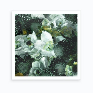 Blossom 3 Art Print
