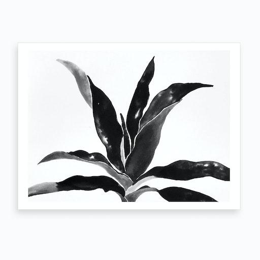 Darkfern Art Print