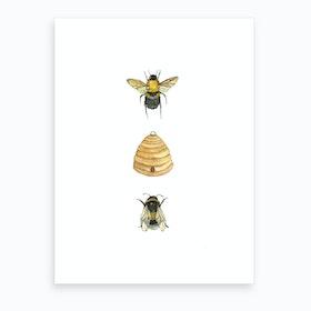 Bumblebee Family Art Print