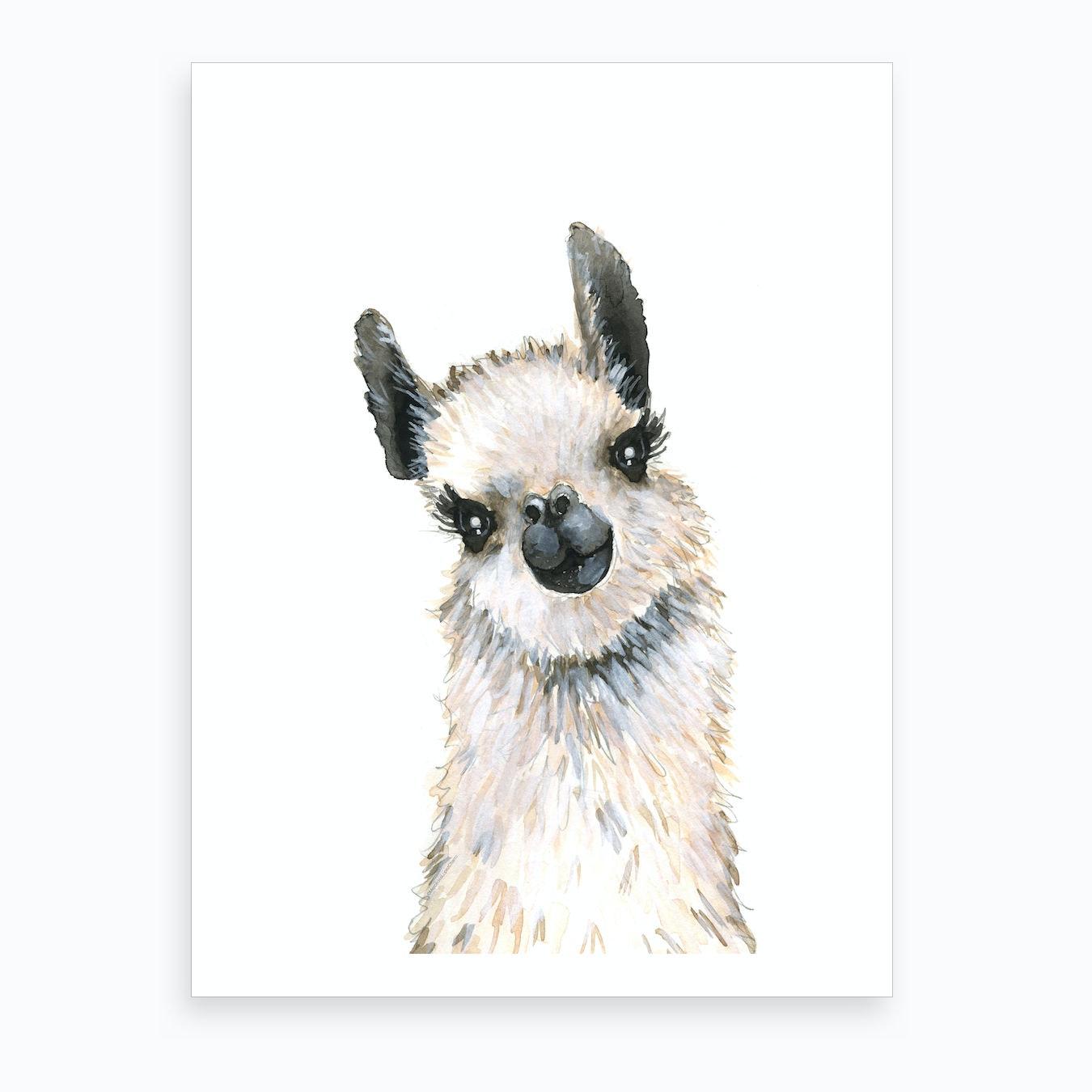Baby Llama Art Print by Mercedes Lopez Charro - Fy
