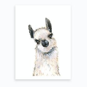 Baby Llama Art Print