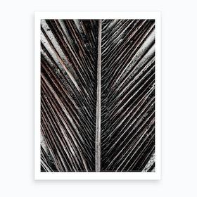 Beach Palm Patterns X Art Print