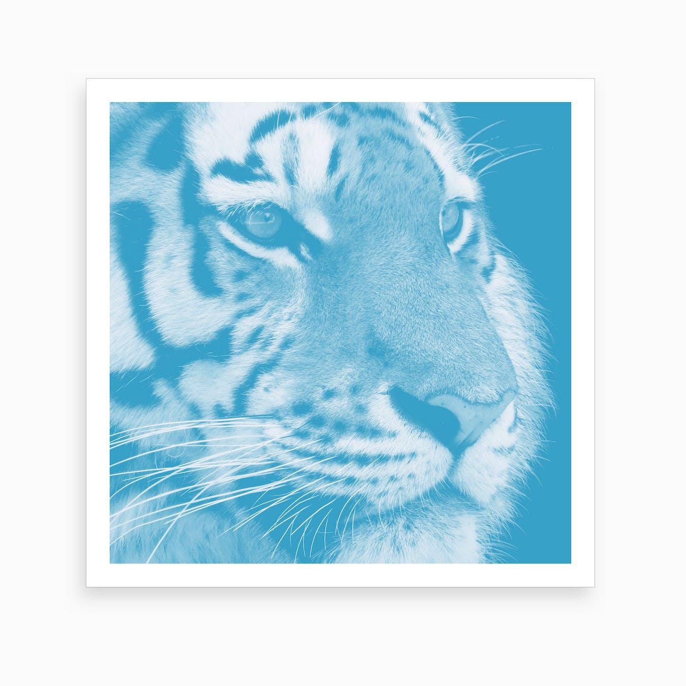 Tiger Pastel Blue Square Art Print