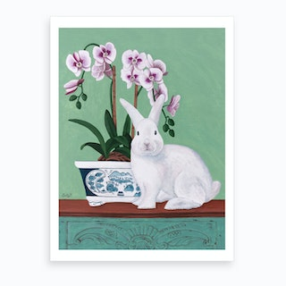 Rabbit And Orchid Art Print