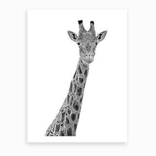 Giraffe Graphic Art Print