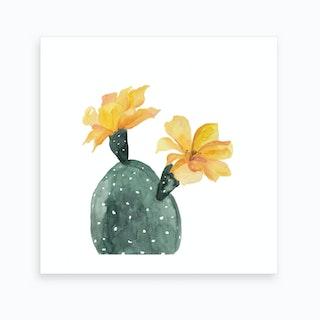 Botanical Illustration   Yellow Cactus Flower Art Print