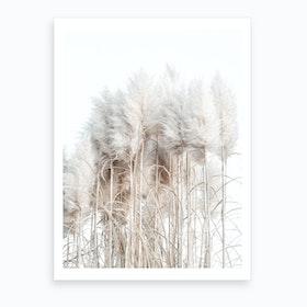 Pampas Grass I Art Print