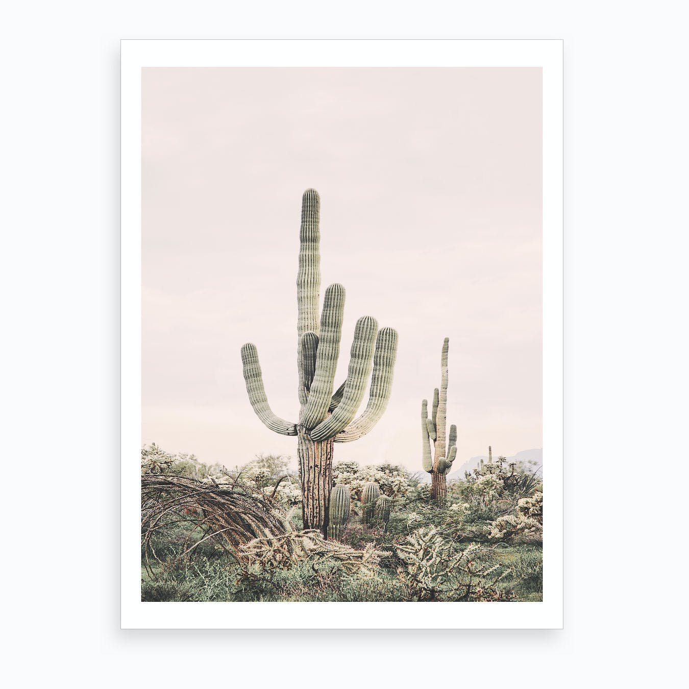 Blush Skies Cactus Art Print
