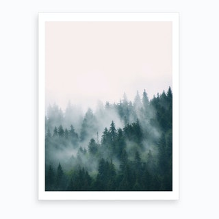 Fog And Forest Art Print