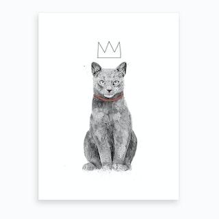 King Of Everything Art Print