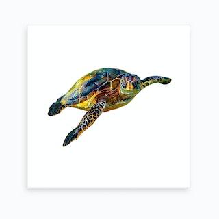 Hawksbill Sea Turtle 2 Art Print