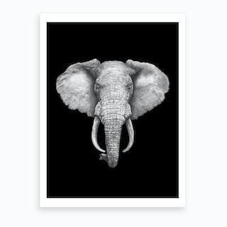 Elephant On Black Art Print