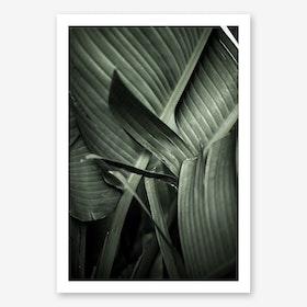 Bananarama Art Print