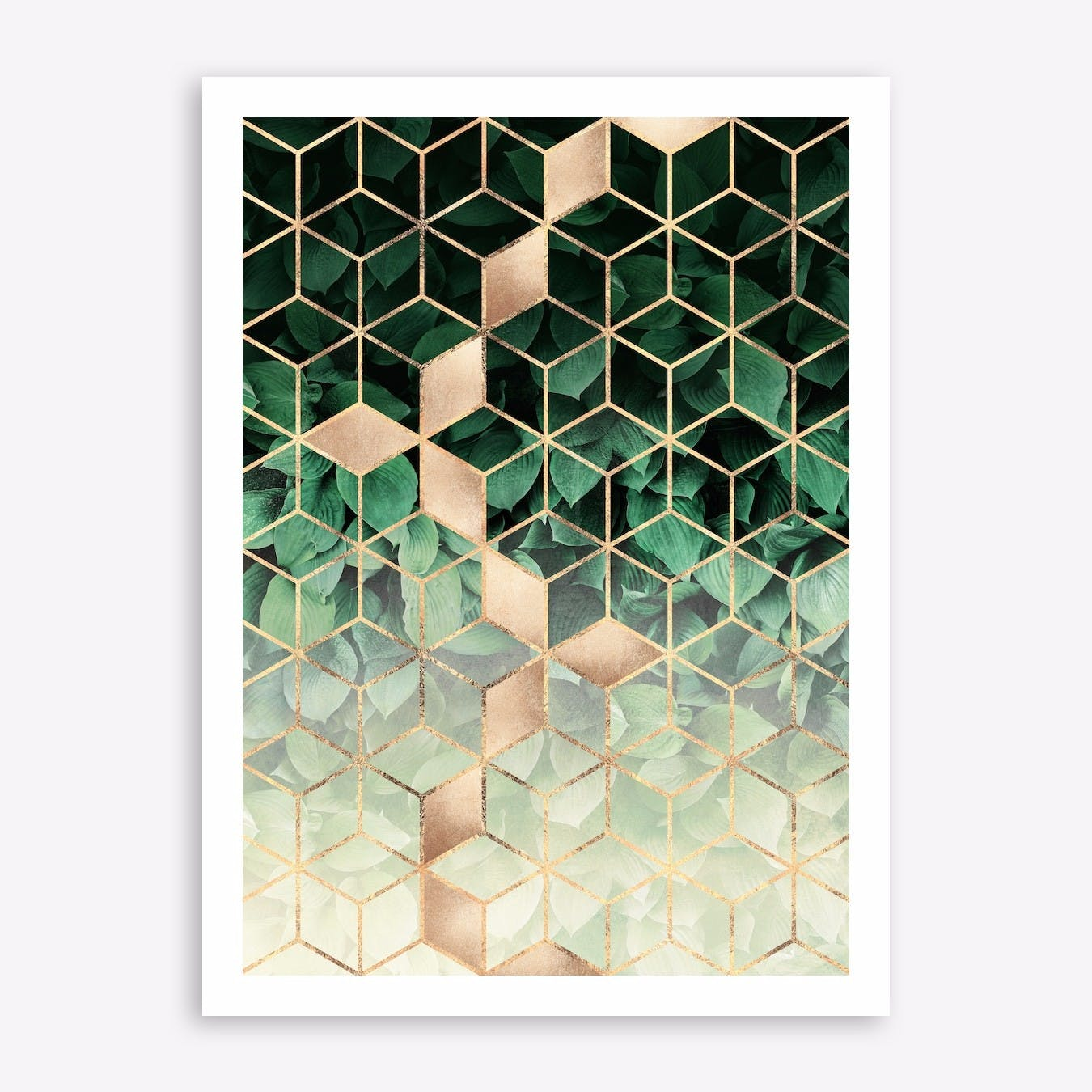 Leaves And Cubes 1 Print