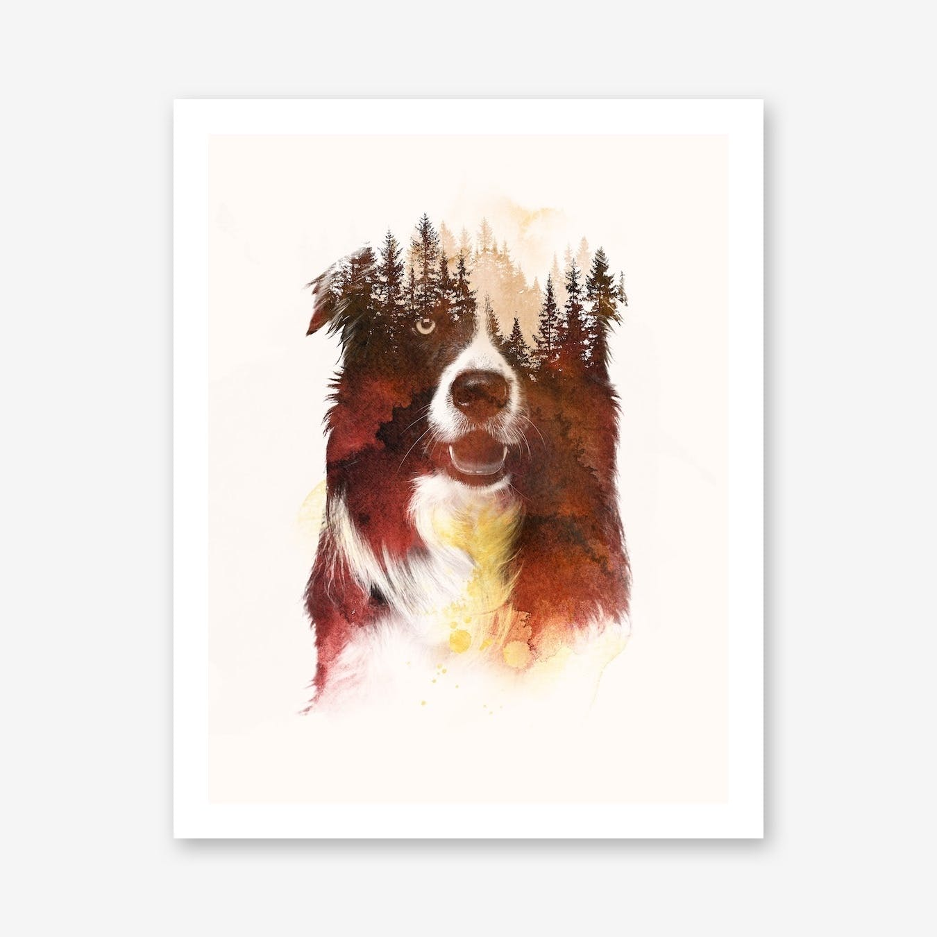 One Night In The Forest Print