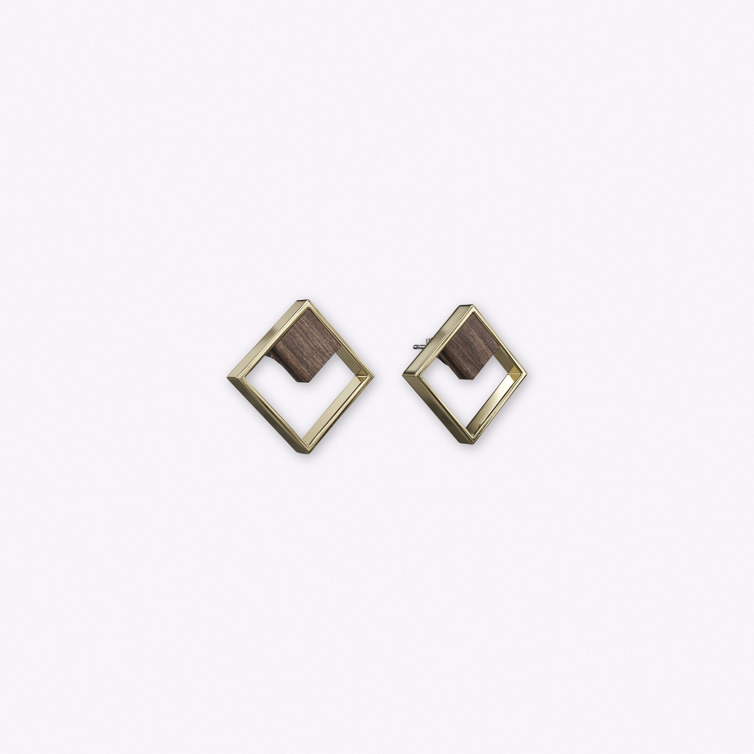 Indikativ Earrings in Wood & Gold