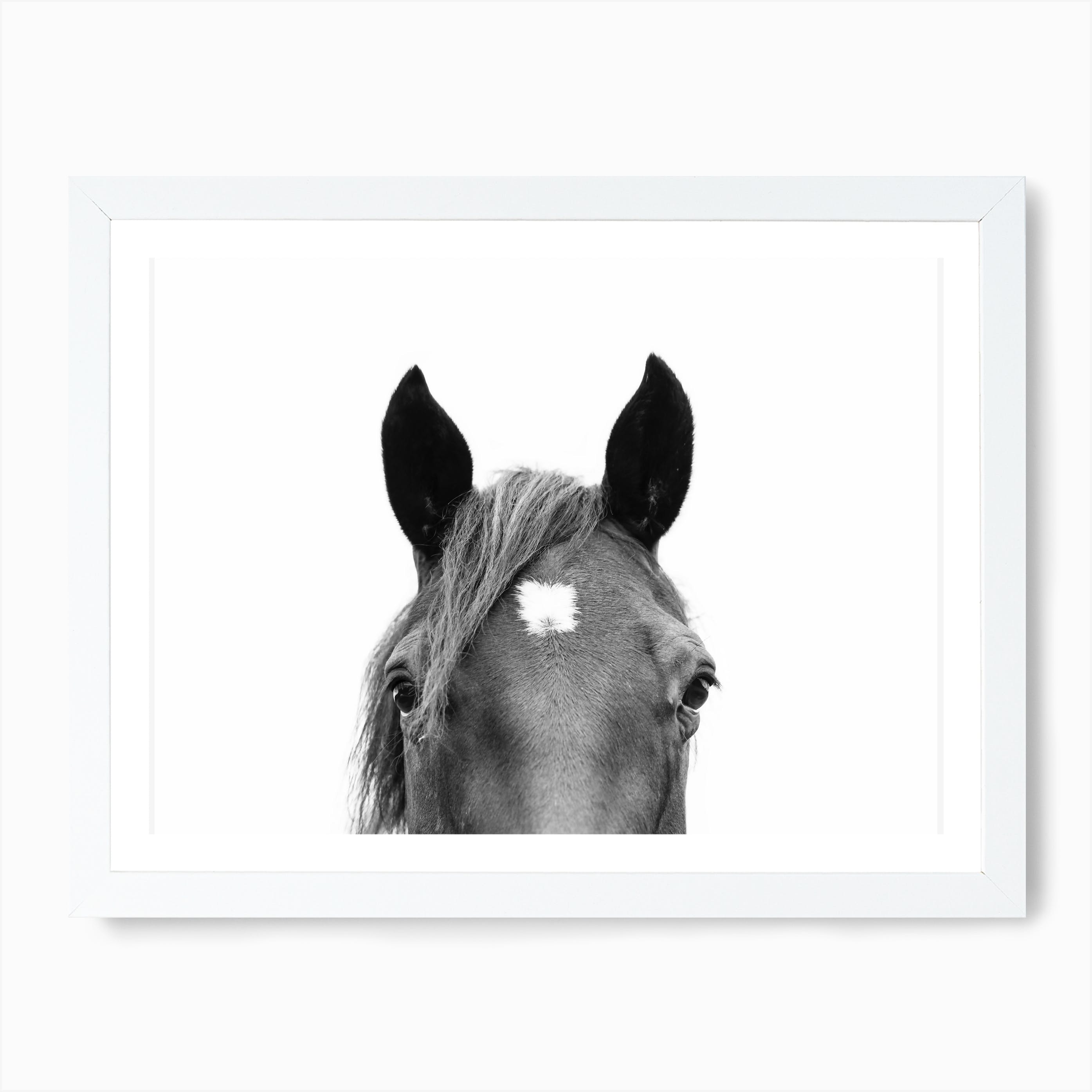 Peeking Horse Wall Art Print Free Shipping Fy