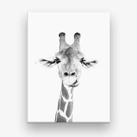 Happy Giraffe Canvas Print